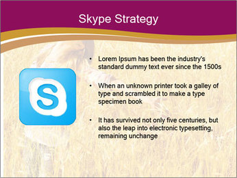 0000081339 PowerPoint Template - Slide 8