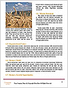 0000081339 Word Templates - Page 4