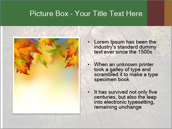 0000081340 PowerPoint Templates - Slide 13
