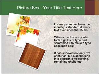 0000081340 PowerPoint Templates - Slide 17
