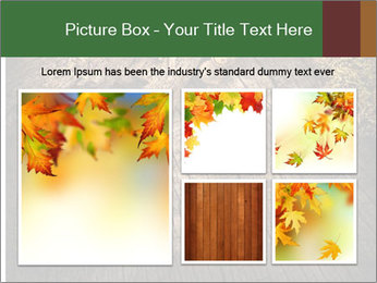 0000081340 PowerPoint Templates - Slide 19