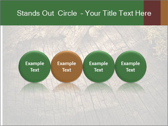 0000081340 PowerPoint Templates - Slide 76