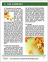 0000081340 Word Templates - Page 3