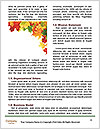 0000081340 Word Templates - Page 4