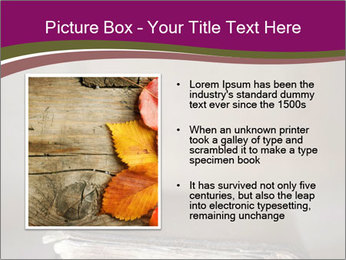 0000081344 PowerPoint Template - Slide 13