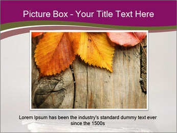 0000081344 PowerPoint Template - Slide 15