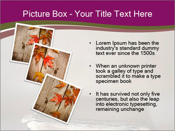 0000081344 PowerPoint Template - Slide 17