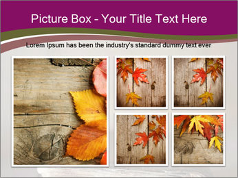 0000081344 PowerPoint Template - Slide 19