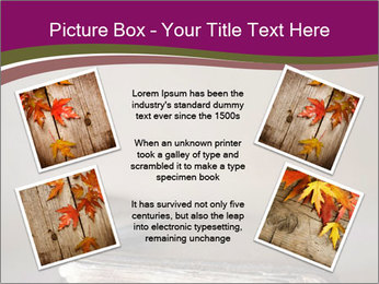 0000081344 PowerPoint Template - Slide 24