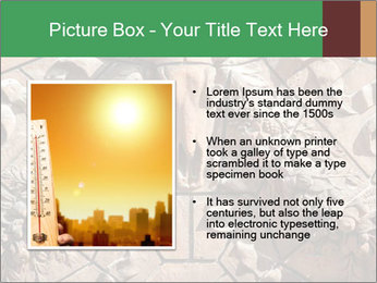 0000081346 PowerPoint Template - Slide 13
