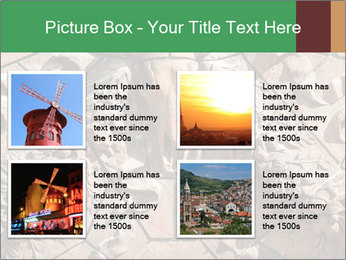0000081346 PowerPoint Templates - Slide 14