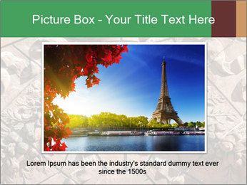 0000081346 PowerPoint Template - Slide 15