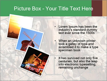 0000081346 PowerPoint Templates - Slide 17