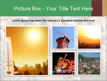 0000081346 PowerPoint Templates - Slide 19