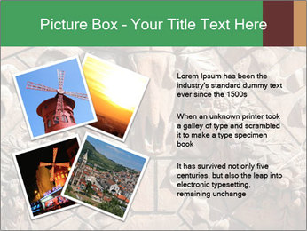 0000081346 PowerPoint Templates - Slide 23