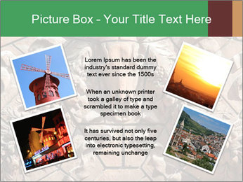 0000081346 PowerPoint Templates - Slide 24