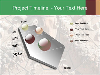 0000081346 PowerPoint Template - Slide 26
