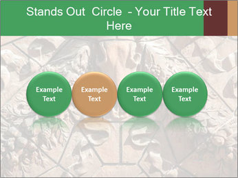 0000081346 PowerPoint Templates - Slide 76