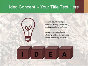 0000081346 PowerPoint Template - Slide 80