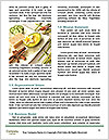 0000081359 Word Templates - Page 4