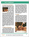 0000081360 Word Template - Page 3
