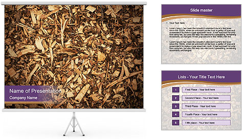 0000081369 PowerPoint Template