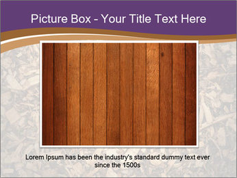 0000081369 PowerPoint Template - Slide 15