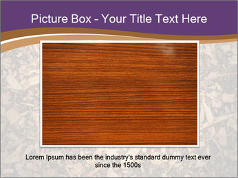 0000081369 PowerPoint Template - Slide 16