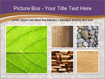 0000081369 PowerPoint Templates - Slide 19