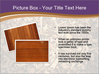 0000081369 PowerPoint Templates - Slide 20
