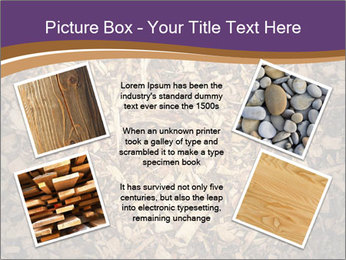 0000081369 PowerPoint Template - Slide 24