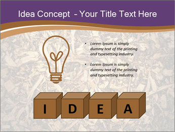 0000081369 PowerPoint Template - Slide 80
