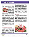 0000081370 Word Template - Page 3