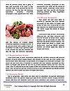 0000081370 Word Templates - Page 4