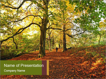 0000081374 PowerPoint Templates - Slide 1