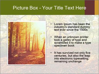 0000081374 PowerPoint Template - Slide 13