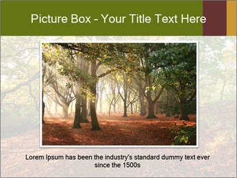 0000081374 PowerPoint Templates - Slide 15