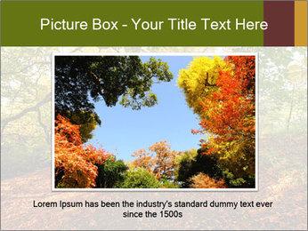 0000081374 PowerPoint Template - Slide 16