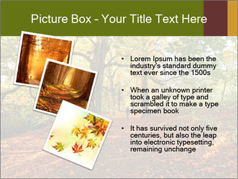 0000081374 PowerPoint Templates - Slide 17