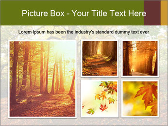 0000081374 PowerPoint Templates - Slide 19