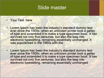 0000081374 PowerPoint Template - Slide 2