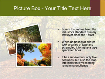 0000081374 PowerPoint Templates - Slide 20