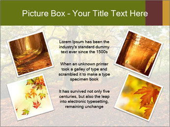 0000081374 PowerPoint Templates - Slide 24