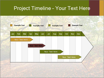 0000081374 PowerPoint Templates - Slide 25