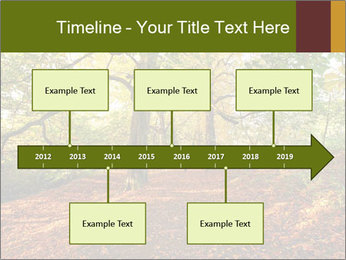 0000081374 PowerPoint Templates - Slide 28