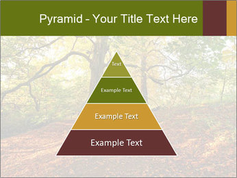 0000081374 PowerPoint Template - Slide 30