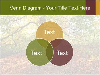 0000081374 PowerPoint Template - Slide 33
