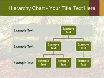 0000081374 PowerPoint Template - Slide 67