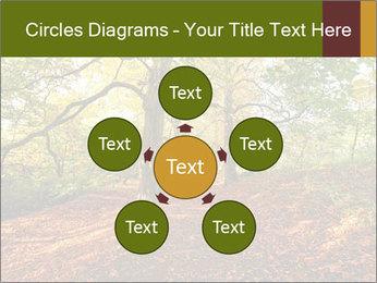 0000081374 PowerPoint Template - Slide 78