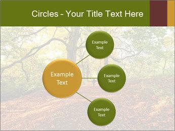 0000081374 PowerPoint Template - Slide 79